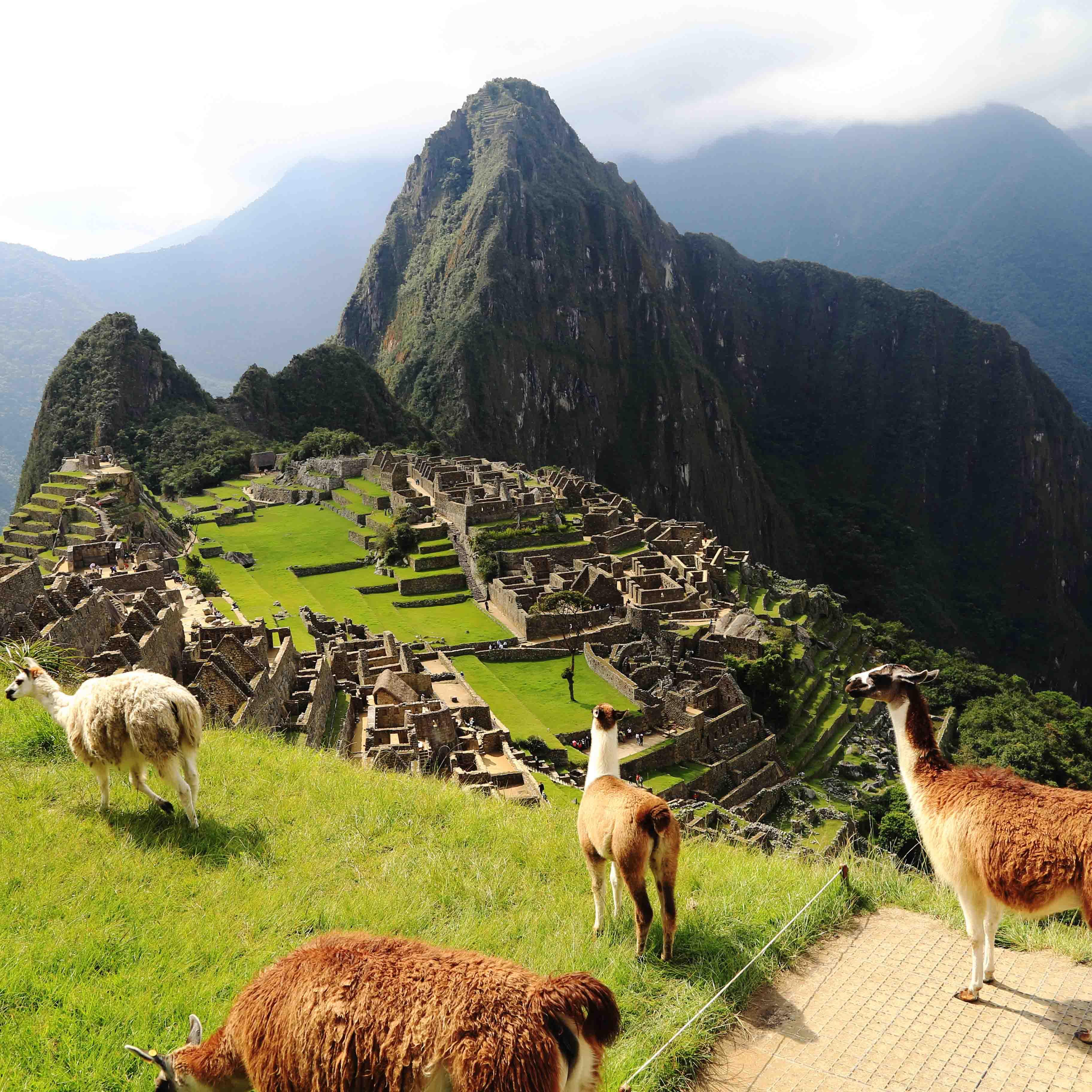秘鲁 | 智利 | 南美洲